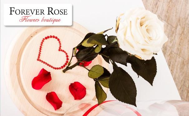 Скидка на Роза в колбе, индивидуальная гравировка, подарочная коробка от интернет-магазина Forever rose. Скидка до 51%