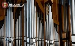 Концерты в Кафедральном соборе